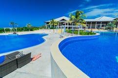 ideia de convite da piscina e de terras douradas do hotel da tulipa com os povos que relaxam no fundo Imagem de Stock