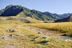 Ideia de montanhas repicadas de Altai e de um caminho que estica na distância foto de stock royalty free