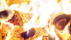 Ideia de Timelapse de firewoods de queimadura no forno filme