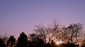 Ideia de um nascer do sol bonito no campo filme
