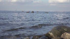 Ideia de um panorama de St Petersburg do Golfo da Finl?ndia Sob a torre da cidade de Gazprom da constru??o no centro video estoque