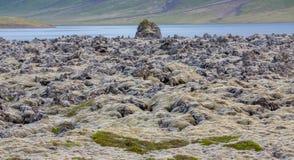 Ideia detalhada da skyline dos campos de lava em Islândia Foto de Stock Royalty Free