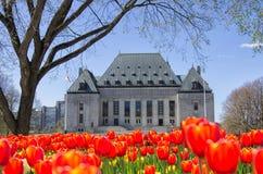 Ideia dianteira da corte de Canadá suprema imagem de stock royalty free