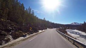 Ideia dianteira de conduzir a estrada em Noruega com floresta e rio pelo lado video estoque