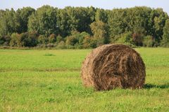 Ideia do campo de exploração agrícola que mostra pacotes do feno Imagem de Stock