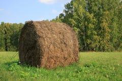 Ideia do campo de exploração agrícola que mostra pacotes do feno Imagens de Stock