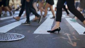 Ideia do close-up dos pés fêmeas à moda Mulher de negócios que cruza a estrada no aglomerado na cidade Movimento lento filme