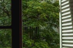 Ideia do exterior através de um wondow fotografia de stock