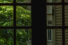 Ideia do exterior através de um wondow imagem de stock royalty free