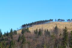 Ideia do pico de montanhas Foto de Stock