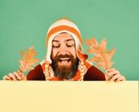 Ideia do tempo dos outubro e novembro O homem guarda as folhas do carvalho fotos de stock royalty free