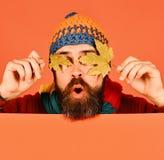 Ideia do tempo dos outubro e novembro outono e tempo frio fotos de stock royalty free