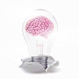Ideia fresca com o cérebro na lâmpada Fotografia de Stock Royalty Free