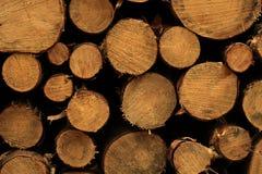 Ideia frontal do log empilhado imagens de stock