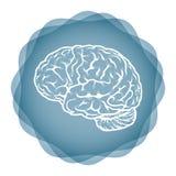 Ideia inovativa - ilustração do cérebro Foto de Stock Royalty Free