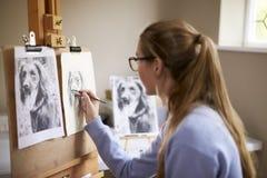 Ideia lateral da imagem adolescente fêmea do desenho de Sitting At Easel do artista do cão da fotografia no carvão vegetal imagem de stock royalty free