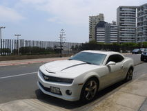 Ideia lateral de uma cor Chevrolet Camaro SS do branco Fotografia de Stock