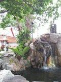 ideia para a natureza no jardim Fotografia de Stock Royalty Free