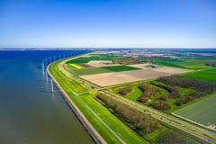 Ideia a?rea de campos das tulipas em Pa?ses Baixos com moinhos de vento e o mar azul fotos de stock