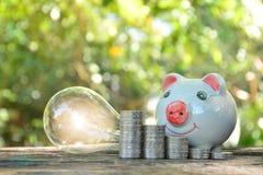 ideia, sucesso, mealheiro, moeda da pilha e ampola postos sobre a casca Foto de Stock Royalty Free