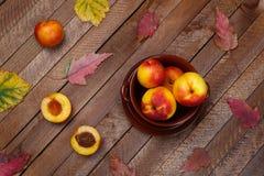 ideia superior da colheita dos pêssegos e das folhas de outono fotografia de stock royalty free