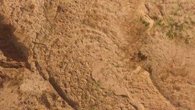 A ideia superior da superfície à terra marrom, fecha-se acima do fundo natural cena Antena para o solo seco sob o sol filme
