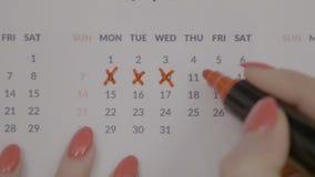 Ideia superior das mãos fêmeas que assinam dias da menstruação do período no calendário com um marcador da cor vermelha - vídeos de arquivo