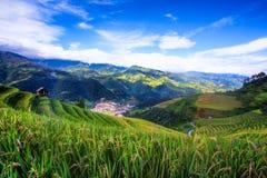 Ideia superior de campo terraced do arroz da MU Cang Chai Fotos de Stock Royalty Free