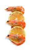 Ideia superior de fatias do camarão e do limão no fundo isolado Foto de Stock