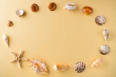 Ideia superior dos shell na tabela amarela Conceito das férias do curso Sonho sobre férias em uma praia tropical Tropi da decoraç Fotografia de Stock Royalty Free