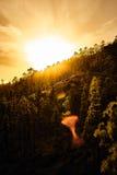 Ideia surpreendente de picos de montanha com as nuvens bonitas no por do sol Lugar: Tenerife, Ilhas Canárias, Espanha artístico Fotos de Stock