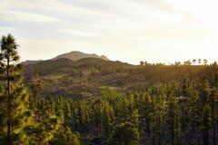 Ideia surpreendente de picos de montanha com as nuvens bonitas no por do sol Lugar: Tenerife, Ilhas Canárias, Espanha artístico Foto de Stock Royalty Free
