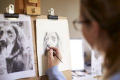 Ideia traseira da imagem adolescente fêmea do desenho de Sitting At Easel do artista do cão da fotografia no carvão vegetal imagens de stock