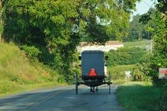 Ideia traseira de mover o cavalo e o carrinho de Amish imagens de stock royalty free