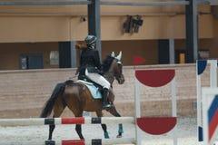 Ideia traseira do cavaleiro equestre fêmea que corre no garanhão na competição de salto de mostra foto de stock royalty free