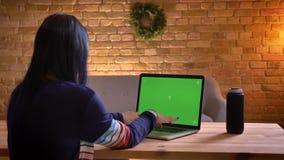 Ideia traseira do close up da datilografia fêmea atrativa nova no portátil com tela verde dentro em um apartamento acolhedor vídeos de arquivo