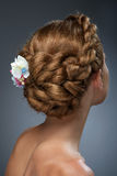 Ideia traseira do corte de cabelo bonito com flores foto de stock royalty free