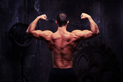 Ideia traseira do modelo masculino da aptidão que mostra seu shou muscled treinado Fotografia de Stock Royalty Free