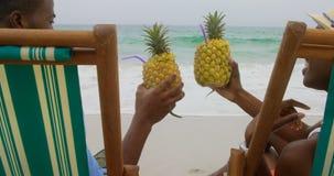 Ideia traseira dos pares afro-americanos que brindam o suco de abacaxi na praia 4k vídeos de arquivo