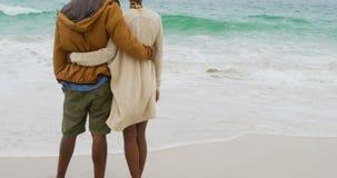 Ideia traseira dos pares afro-americanos que est?o junto na praia 4k vídeos de arquivo