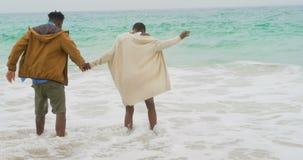 Ideia traseira dos pares afro-americanos que jogam com as ondas do mar na praia 4k vídeos de arquivo