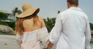 Ideia traseira dos pares caucasianos que andam em conjunto na praia 4k filme
