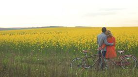 Ideia traseira dos pares de amantes com as bicicletas que abraçam maciamente ao apreciar o beaty do campo coberto com filme