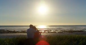 Ideia traseira dos pares românticos que sentam-se na praia 4k vídeos de arquivo