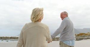 Ideia traseira dos pares superiores caucasianos velhos que andam em conjunto na praia 4k filme