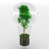 Ideia verde Foto de Stock Royalty Free