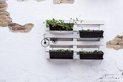 Ideias da pálete para jardinar Foto de Stock
