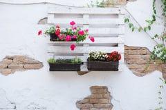 Ideias da pálete para jardinar Fotos de Stock