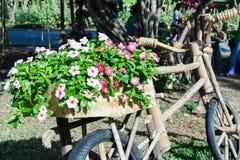 Ideias de jardinagem com bicicleta de madeira Imagens de Stock