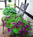 Ideias do jardim Projeto do vintage Flores coloridas imagens de stock royalty free